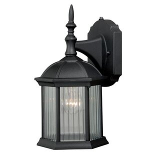 Tennyson 1-Light Outdoor Wall Lantern