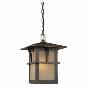 Darby Home Co Bush Creek 1-Light Outdoor Hanging Lantern