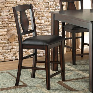 Vilo Home Inc. Tuscan Hills Dining Chair (Set of 2)