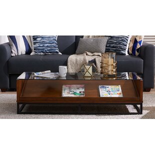 Zariah Coffee Table with Display Storage by Millwood Pines