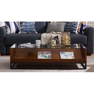 Zariah Coffee Table With Display Storage