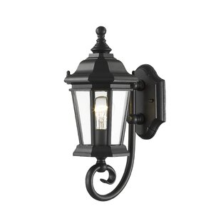 Fleur De Lis Living Bibb 1-Light Outdoor Wall Lantern