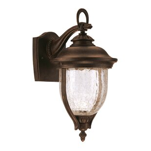 Kriner 1-Light Outdoor Wall lantern
