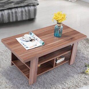 Winston Porter Broadview Coffee Table with Storage