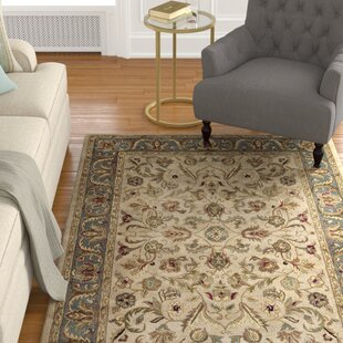 Affordable Price Queens Ivory Area Rug By Astoria Grand