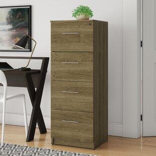 Buragate 4-Drawer Filing Cabinet by Latitude Run