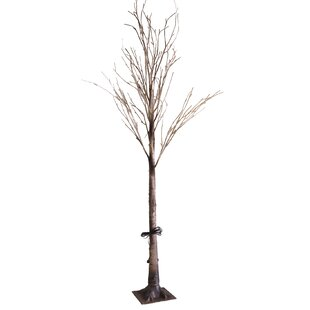 LED 72 Light Natural Wild Birch Tree by Lightshare
