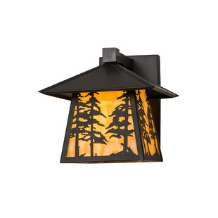 Best Price Ziemer Outdoor Wall Lantern By Loon Peak