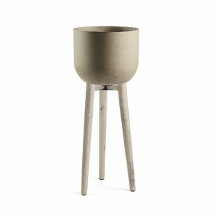 Keaton Cement Cachepot By Isabelline