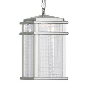 Brayden Studio Olympia 1-Light Outdoor Hanging Lantern