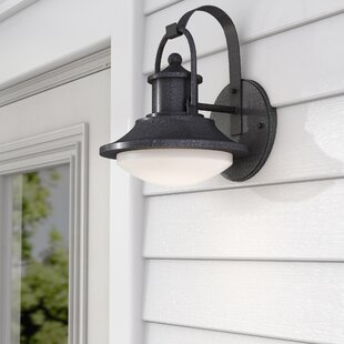 Farias 1-Light Outdoor Barn Light