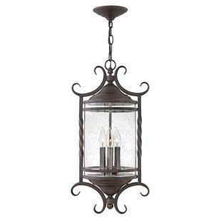 Hinkley Lighting Casa 3-Light Outdoor Hanging Lantern