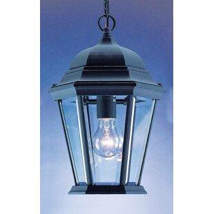 Volume Lighting 1-Light Outdoor Hanging Lantern