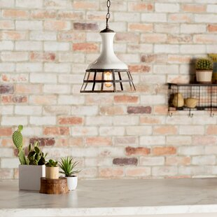 Trent Austin Design Sandra 1-Light Cone P..