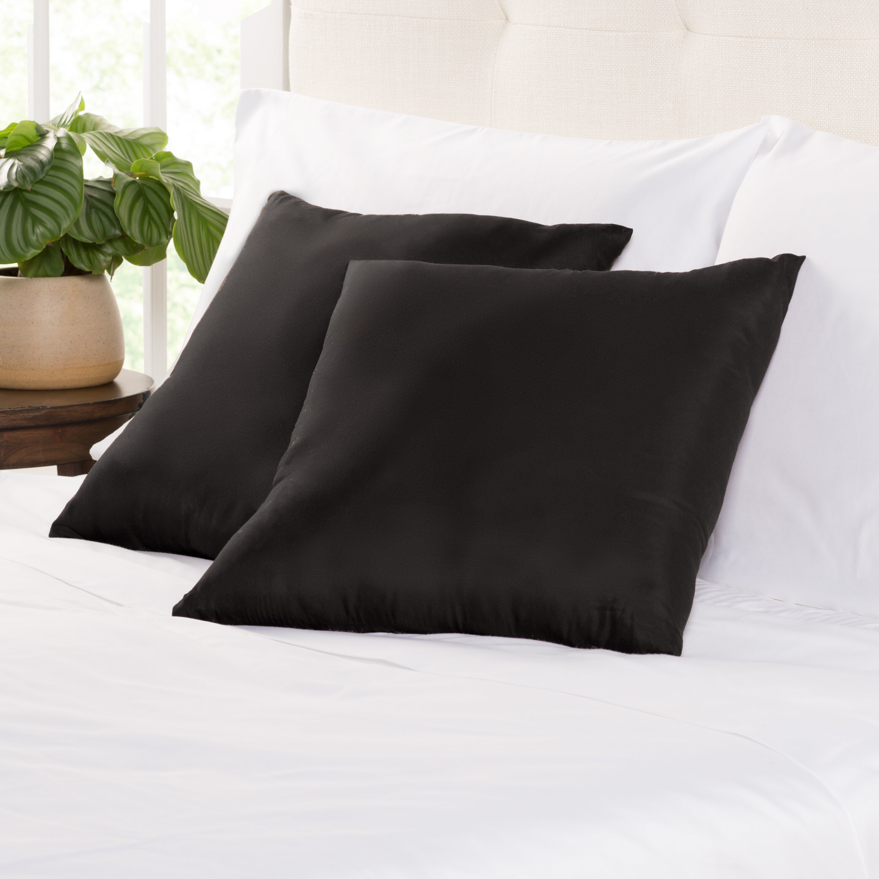 Wayfair Basics Square Throw Pillow & Reviews  Wayfair
