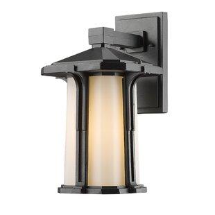 Online Reviews Pelzer 1-Light Outdoor Wall Lantern By Loon Peak