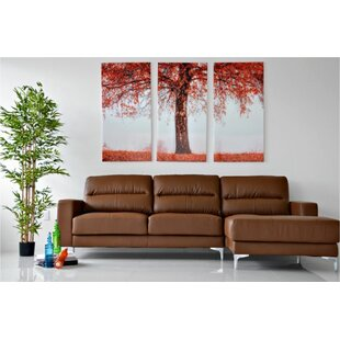 Bauch Sectional