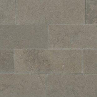 Great 12X24 Ceiling Tile Thick 1930S Floor Tiles Clean 24X24 Ceramic Tile 3X6 Subway Tile Backsplash Youthful 6X6 Ceramic Tile BlueAllure Flooring Over Tile Taupe Subway Tile | Wayfair
