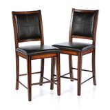 Upslope 24 Bar Stool (Set of 2) by Red Barrel Studio®