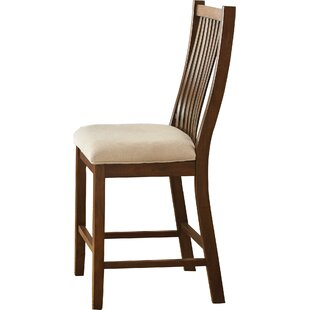 Alcott Hill Quaker Counter Height Dining Chairs (Set of 2)