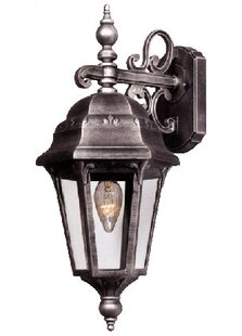 Astor 1-Light Outdoor Wall Lantern by Special Lite Products Comparison