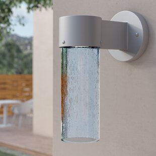 Cattalina LED 1-Light Outdoor Sconce