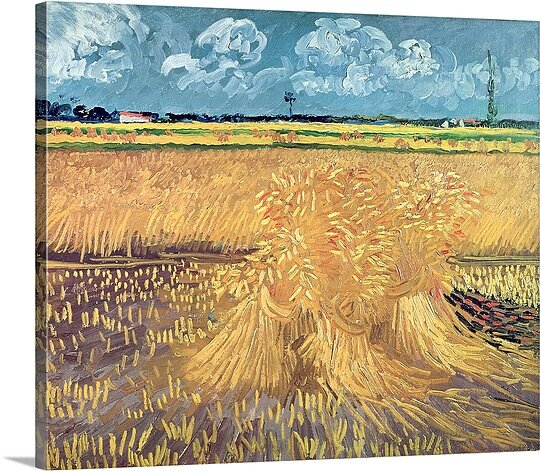 Wheatfield with Sheaves, 1888 by Vincent Van Gogh - Picture Frame Print on Canvas