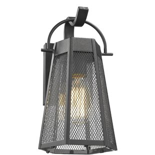 Williston Forge Joann Industrial Textured Outdoor Wall Lantern