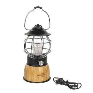 Alonzo Brown Battery Powered LED Lantern With Electric Candle By Freeport Park