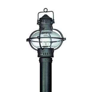 Darby Home Co Theodore 1-Light Glass Shade Post Lantern