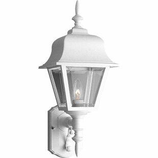Bargain Leiters 1-Light Outdoor Sconce By Darby Home Co