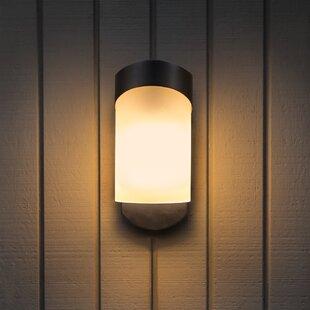Carlin Contemporary 1-Light Outdoor Wall Lantern By Brayden Studio