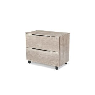 Albin 2-Drawer Lateral Filing Cabinet by Ebern Designs