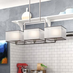 Best Price T.S. 3-Light Drum Pendant By Orren Ellis