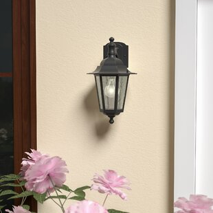 Mayer Outdoor Wall Lantern