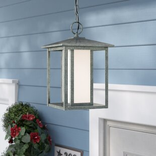 Breno 100W 1-Light Outdoor Pendant