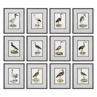 'Seashore Birds' 12 Piece Framed Graphic Art Set