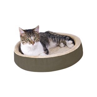 Terrific Outdoor Heated Cat Bed Wayfair Download Free Architecture Designs Rallybritishbridgeorg