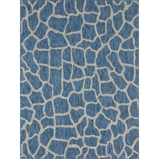 Muro Blue/Gray Indoor/Outdoor Area Rug