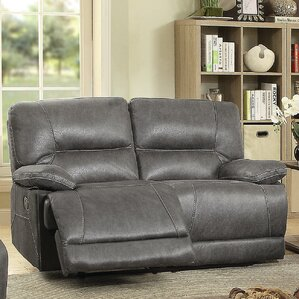 Pictor Reclining Loveseat by Latitude Run