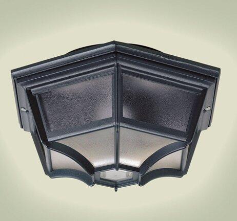 Endon lighting 1 light outdoor bulkhead light reviews wayfair 1 light outdoor bulkhead light mozeypictures Choice Image