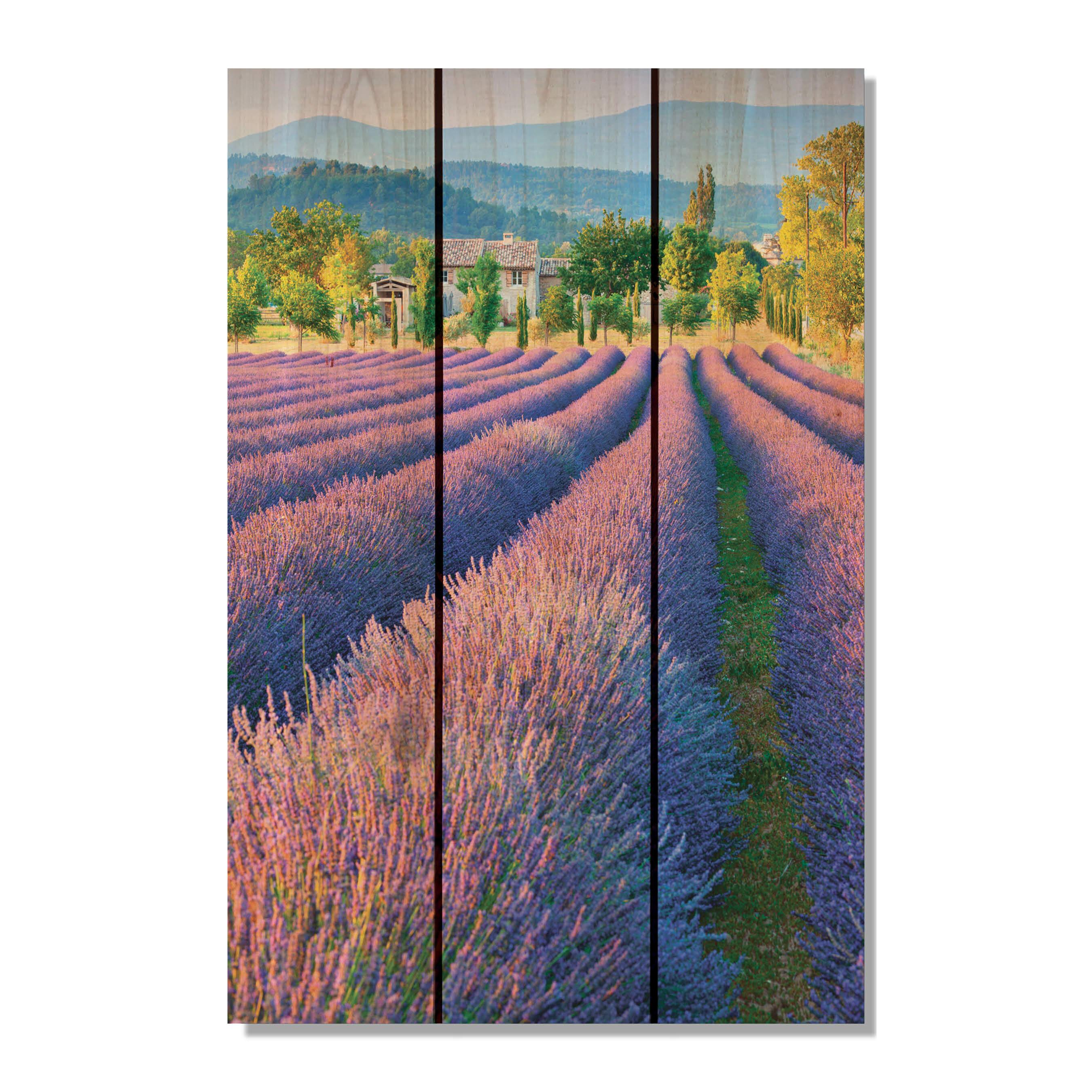 Gizaun Art French Lavender Photographic Print On Wood Wayfair