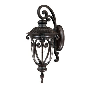Top Reviews Appalachian Outdoor Wall Lantern By Astoria Grand