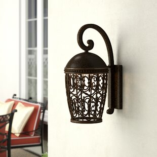 Claverack 1-Light Outdoor Wall Lantern