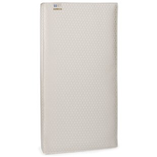 Guide to buy EverLite 2-Stage Lightweight 5.5 Crib and Toddler Bed Mattress BySealy
