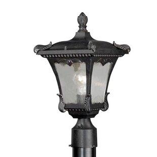 Astoria Grand Earl Outdoor 1-Light Lantern Head