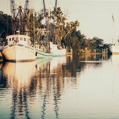 Shrimp Boat Wayfair