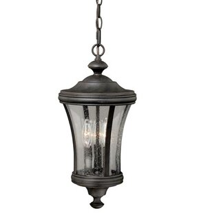 Darby Home Co Bronzewood 1-Light Foyer Pendant