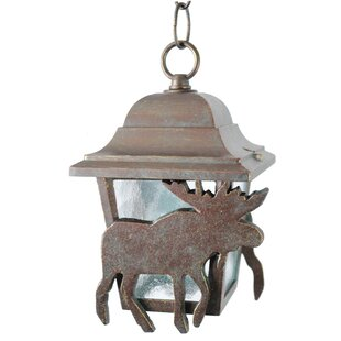 Penfield 1-Light Outdoor Hanging Lantern By Alcott Hill Outdoor Lighting