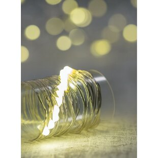 The Holiday Aisle Caelo LED 20 Light Fairy String Light (Set of 3)